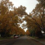 秋の街なみ